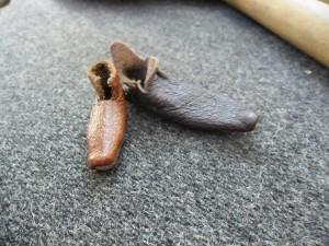 Tiny medieval turnshoe